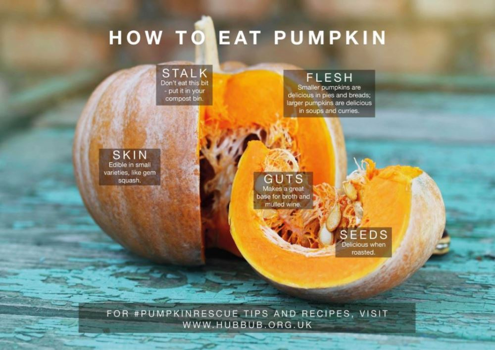 how to eat pumpkin