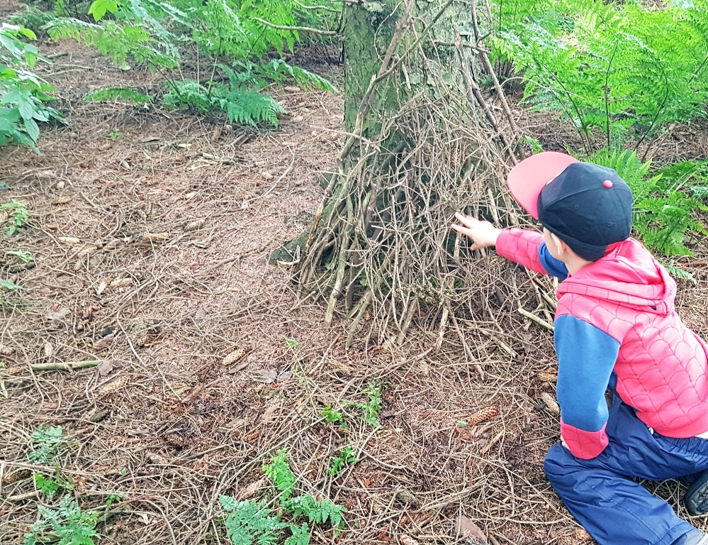 little boy making stick dens.