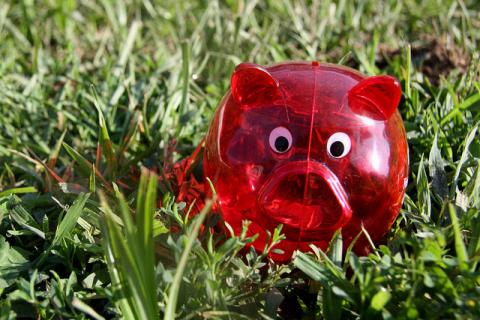 A red piggy bank in the grass.