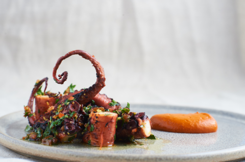 bbqd_octopus_with_romesco_sauce.