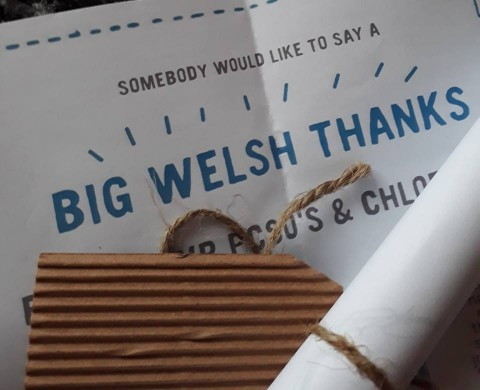 Certificate from the Big Welsh Thanks.