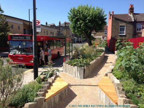Edible bus stop in Stockwell.