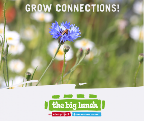Grow Connections image of flower and big lunch logo