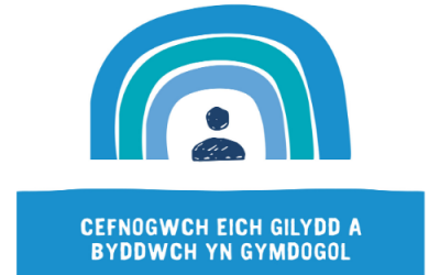 Support Welsh Web